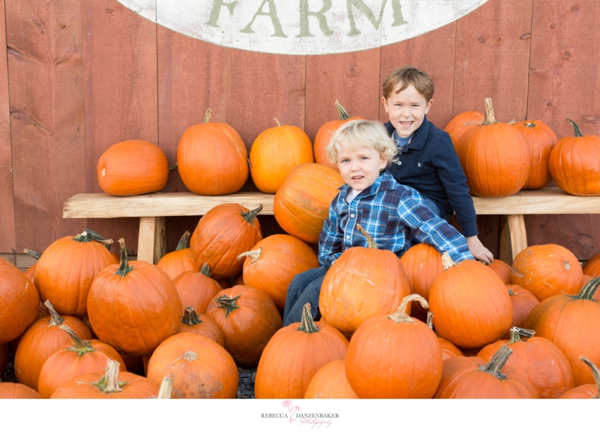 Photo of two boys sitting on pumpkins at a farm in Northern Virginia