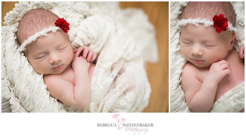Newborn Portraits Arlington VA