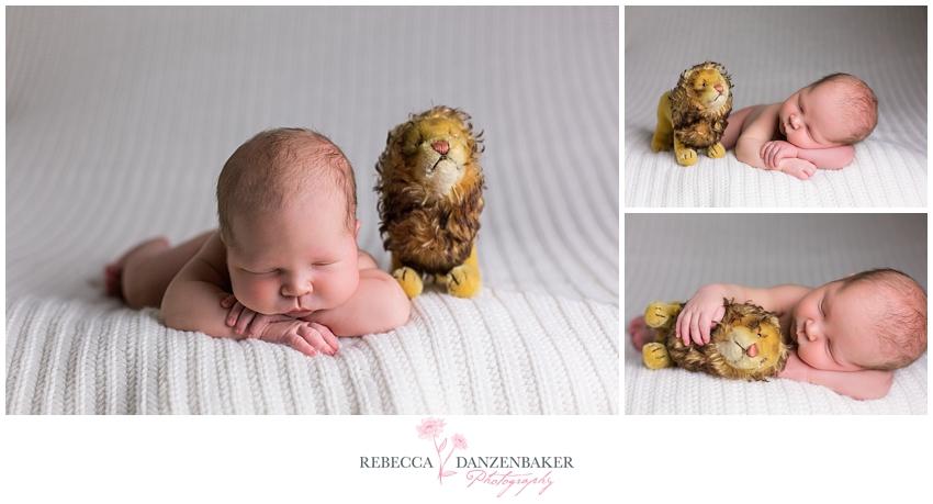 Newborn portraits ashburn va