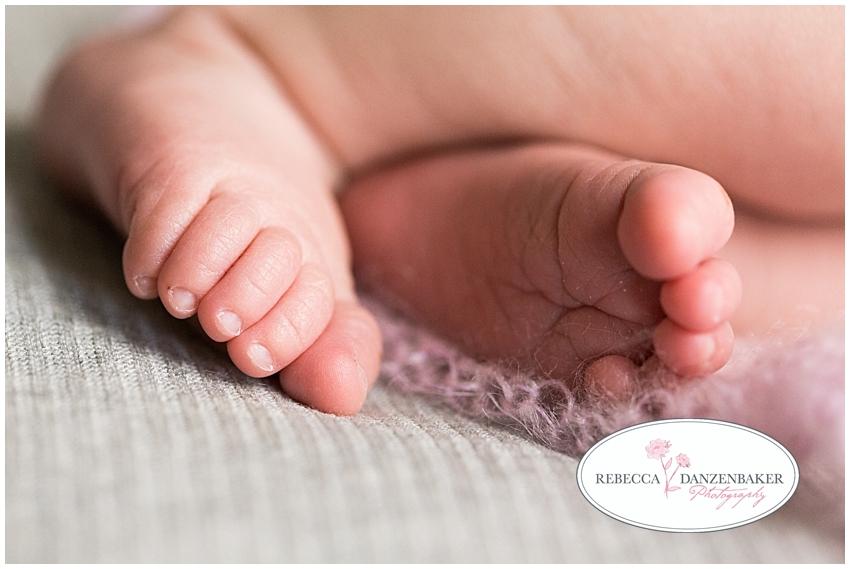 Newborn portraits centreville VA