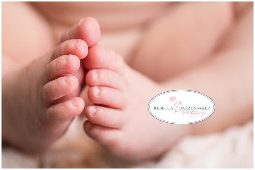 baby portraits fairfax va