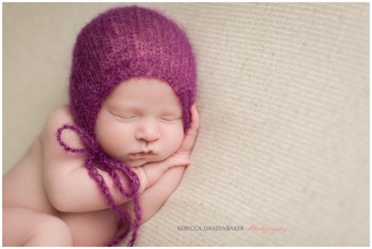newborn portraits leesburg va