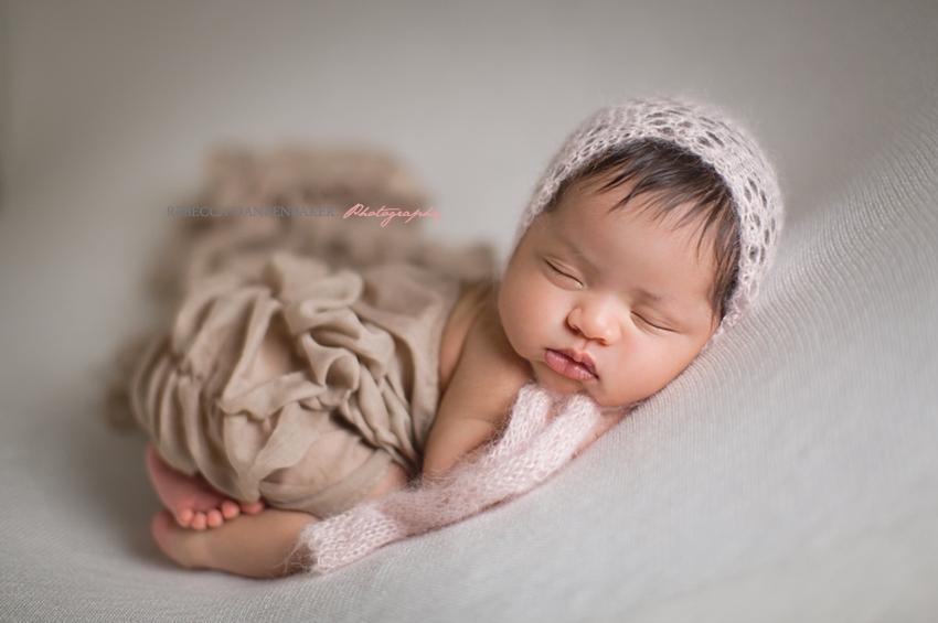 Brambleton va newborn portraits