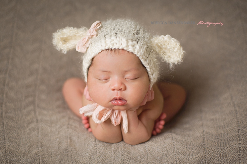 best newborn photographer in brambleton va