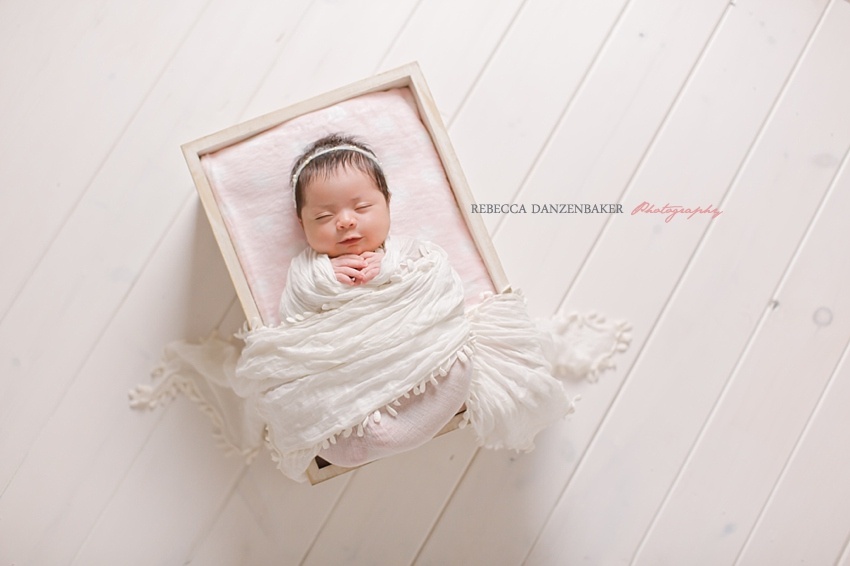 newborn baby photography brambleton
