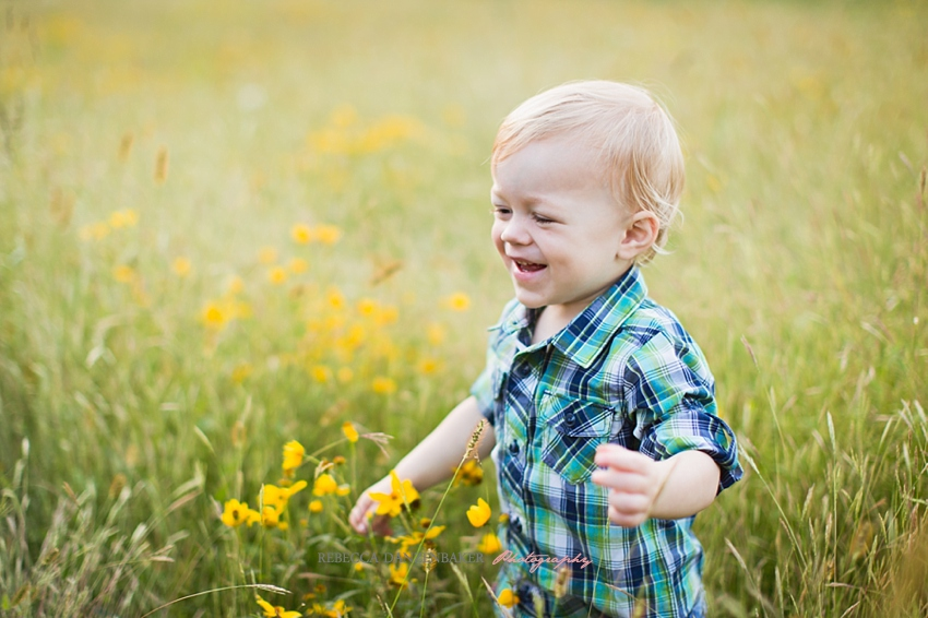Wildflower family photography in Northern Virginia