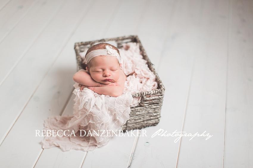 leesburg va newborn photography studio