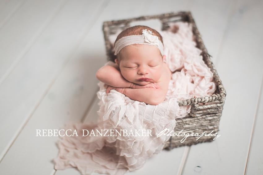 aldie va newborn photography studio