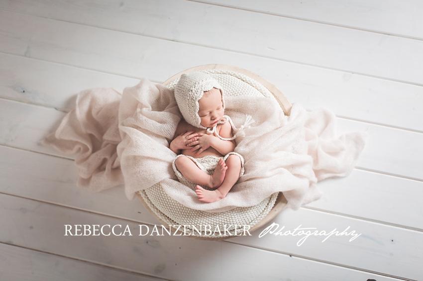 aldie va newborn photography