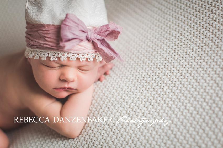 newborn portraits in Leesburg VA