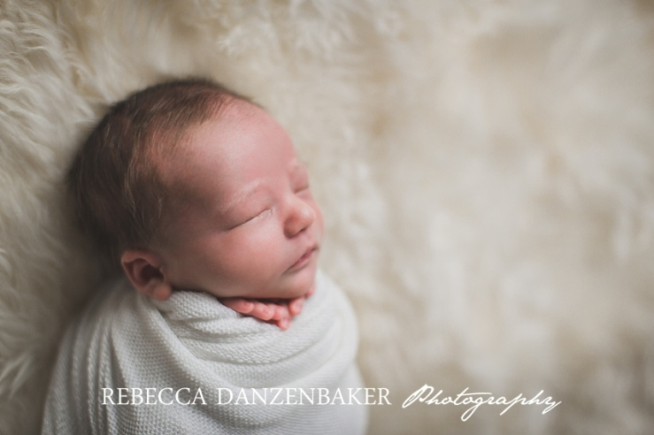 Best newborn photographer in Aldie VA