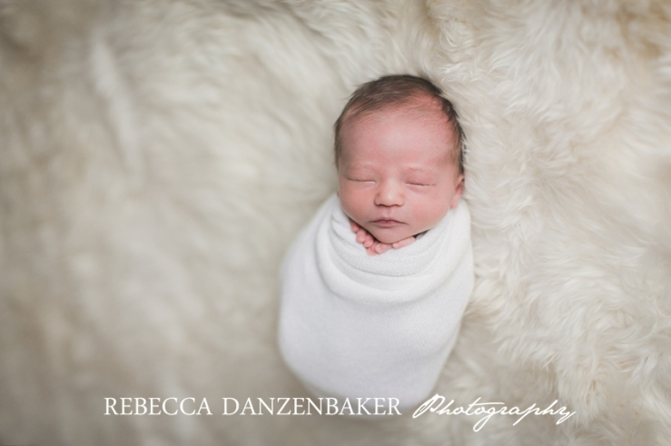 Top newborn photography in Ashburn VA