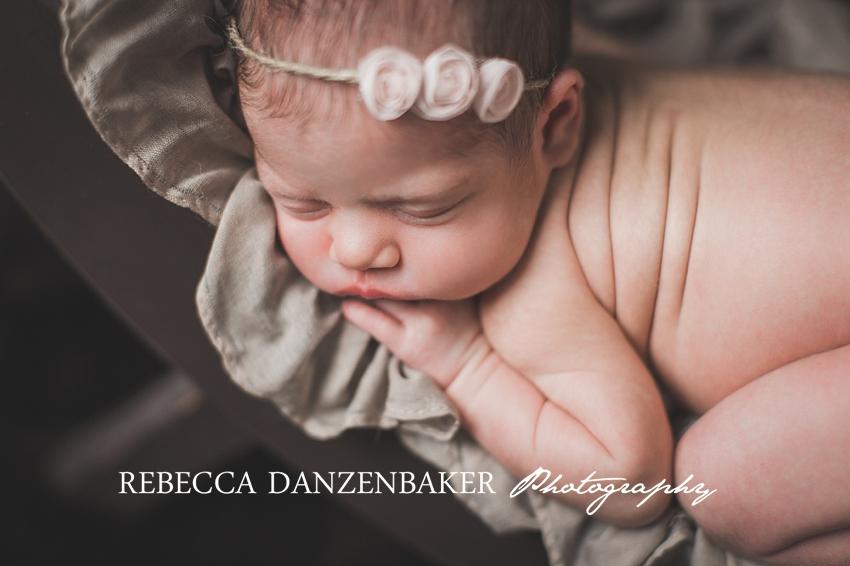best newborn photographer in loudoun county va