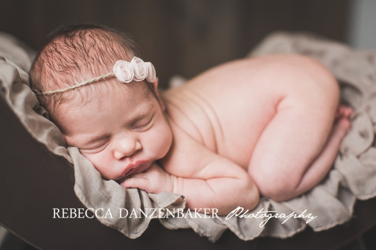 best newborn photos in loudoun county va