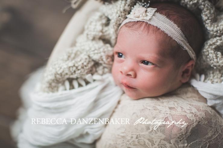 loudoun newborn pictures