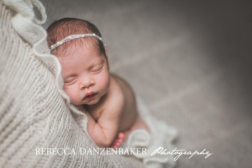 Newborn portraits northern virginia