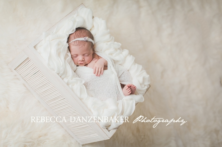 newborn pictures Loudoun County