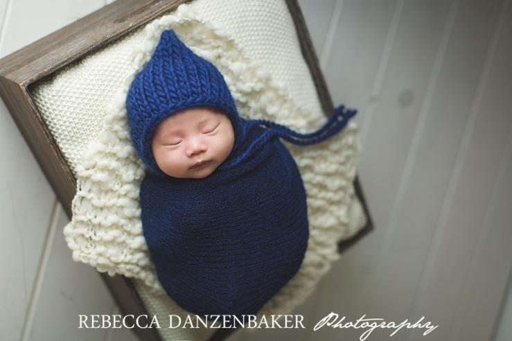 Best newborn photographer in Aldie VA
