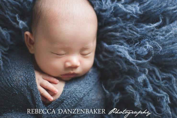 Best newborn photographer in Middleburg VA