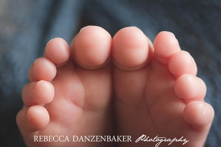 newborn baby pictures in leesburg va
