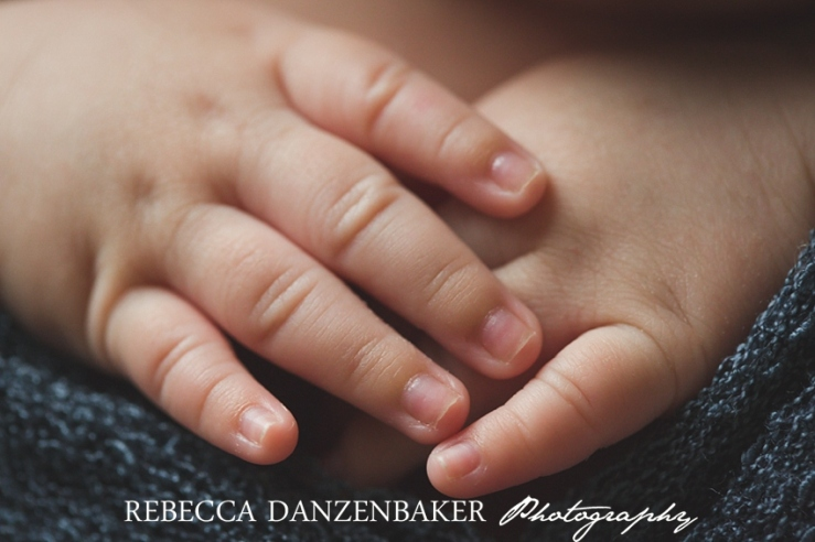 Newborn baby portraits in Ashburn VA