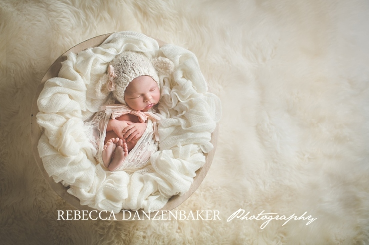 Newborn portrait studio in loudoun county