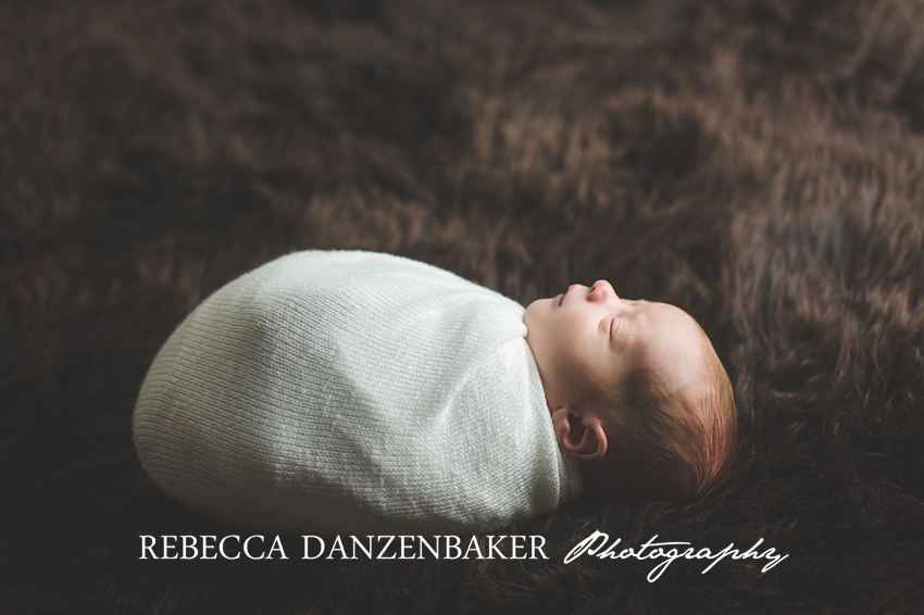 newborn studio photography in Aldie