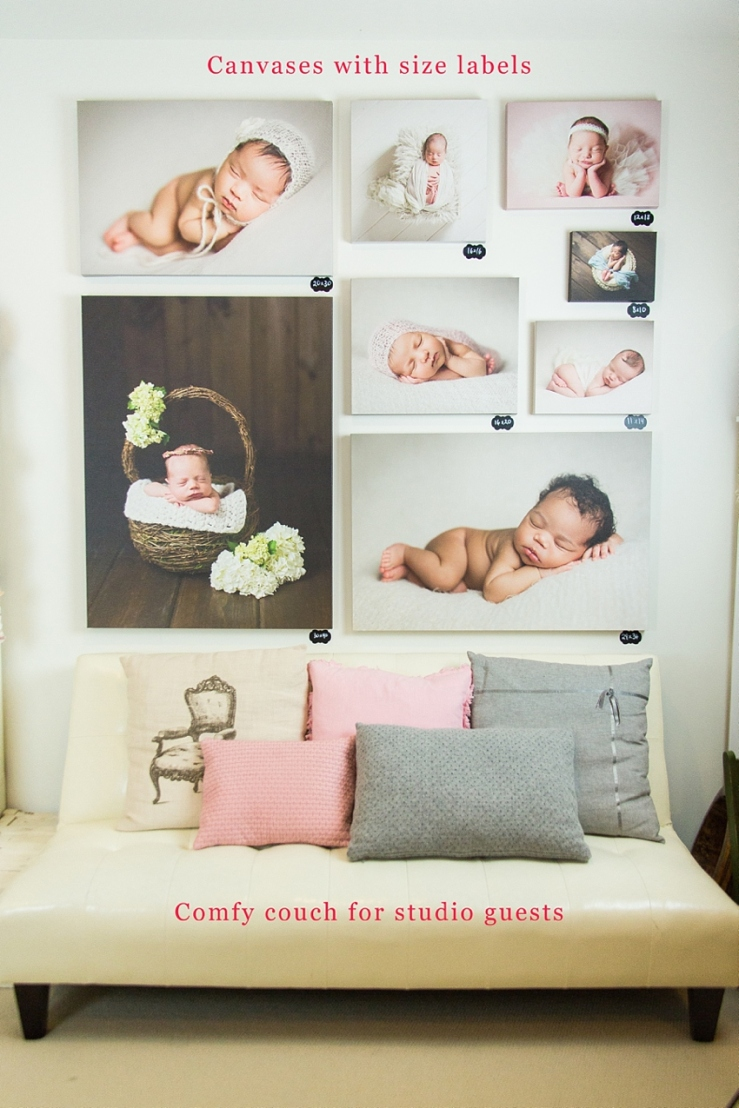Newborn photography studio in Loudoun County