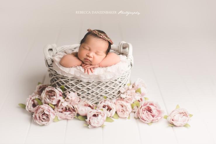 Ashburn VA Winter newborn photos