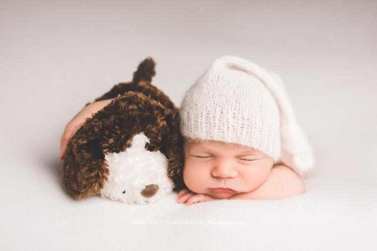 newborn portrait of baby in a cap hugging a dog stuffed animal prop