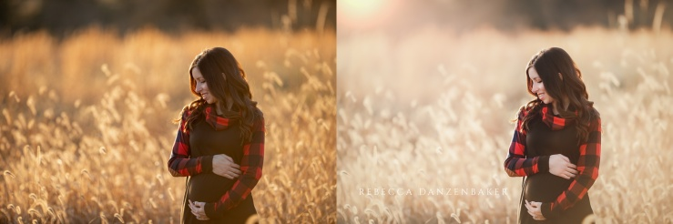 maternity photographer northern virginia
